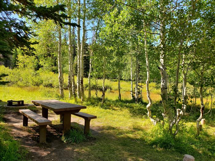 Gooseberry Group Campground Site #1