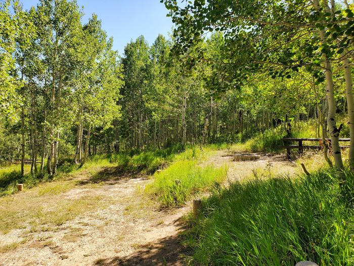 Gooseberry Group Campground Site #6