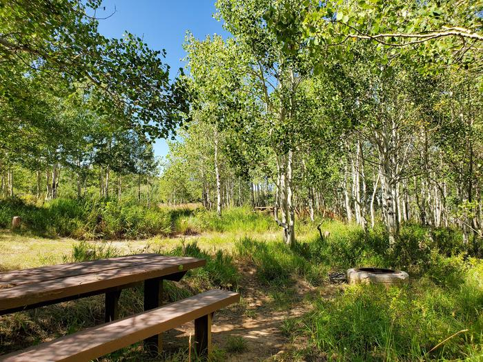 Gooseberry Group Campground Site #8aGooseberry Group Campground Site #8