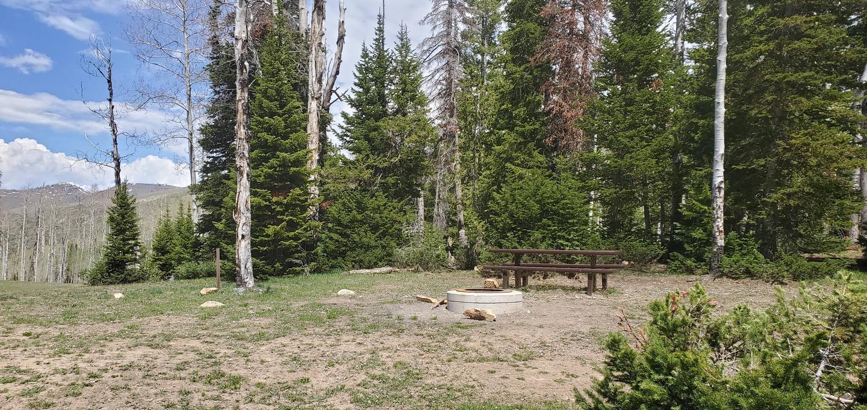 Miller Flat Reservoir Campground Site 2Miller Flat Reservoir Campground