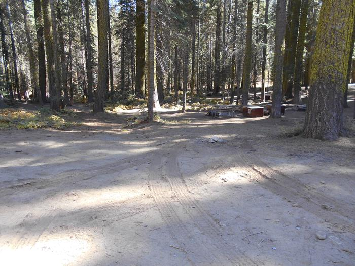 Crane Flat Site 208
