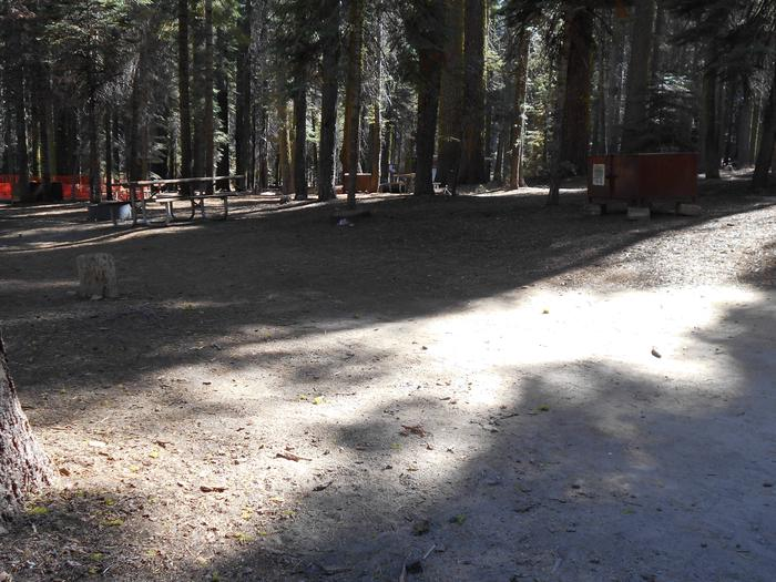 Crane Flat Site 223