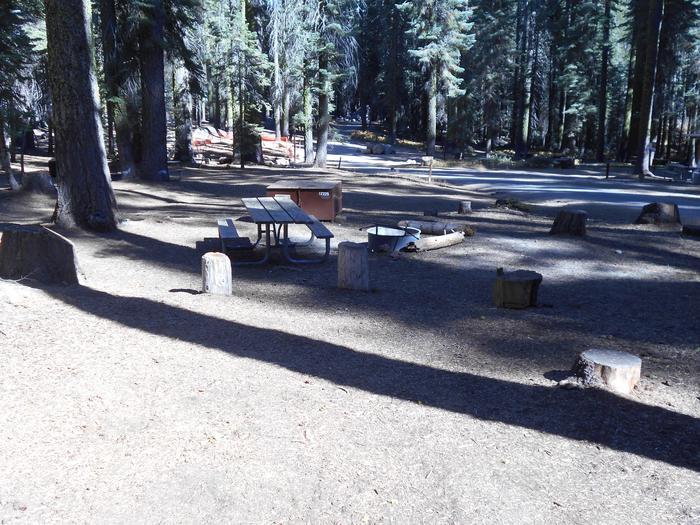 Crane Flat Site 225