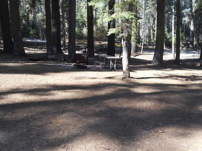 Crane Flat Site 242