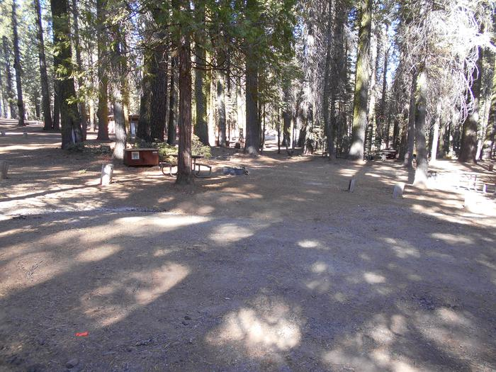 Crane Flat Site 303