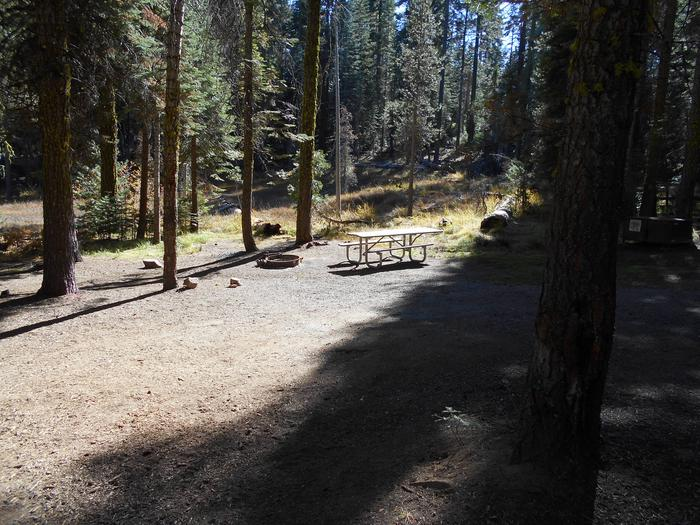 Crane Flat Site 306