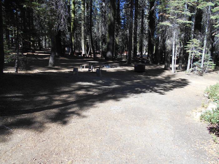 Crane Flat Site 305