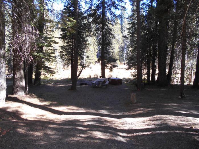 Crane Flat Site 310