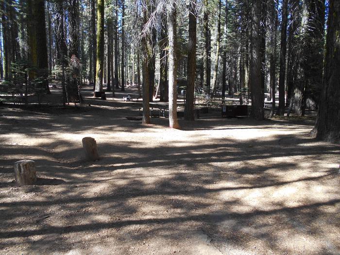 Crane Flat Site 307