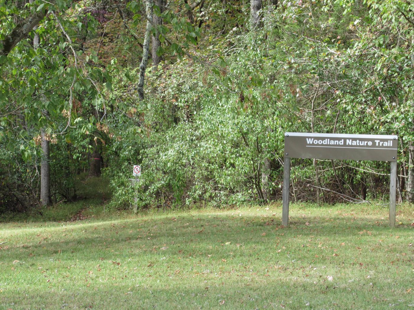 Smith Ridge Campground TrailTrail head in B-Loop