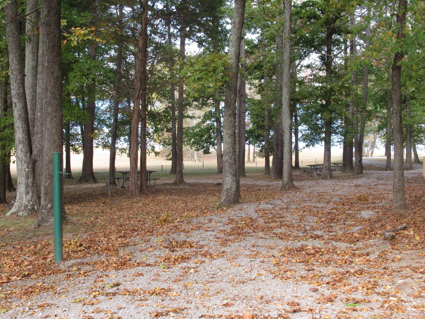 Smith Ridge Picnic AreaPicnic Area located near the beach about 2 miles from campground