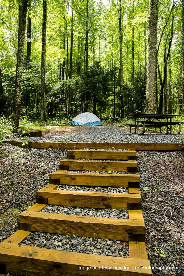 Secluded tent sitesSome sites require climbing stairs or walking up or down a slope. Check site descriptions if you have special restrictions.