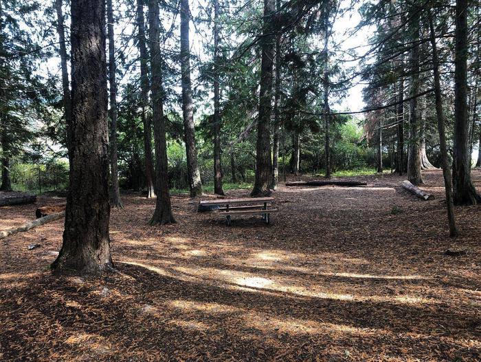 Albeni Cove Site 13