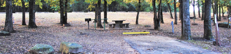 Ladybird Campsite 28Campsite