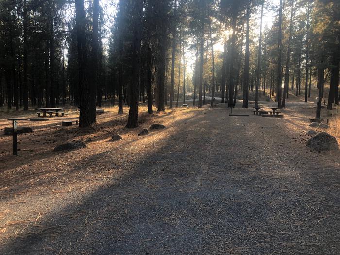 Campsite A5