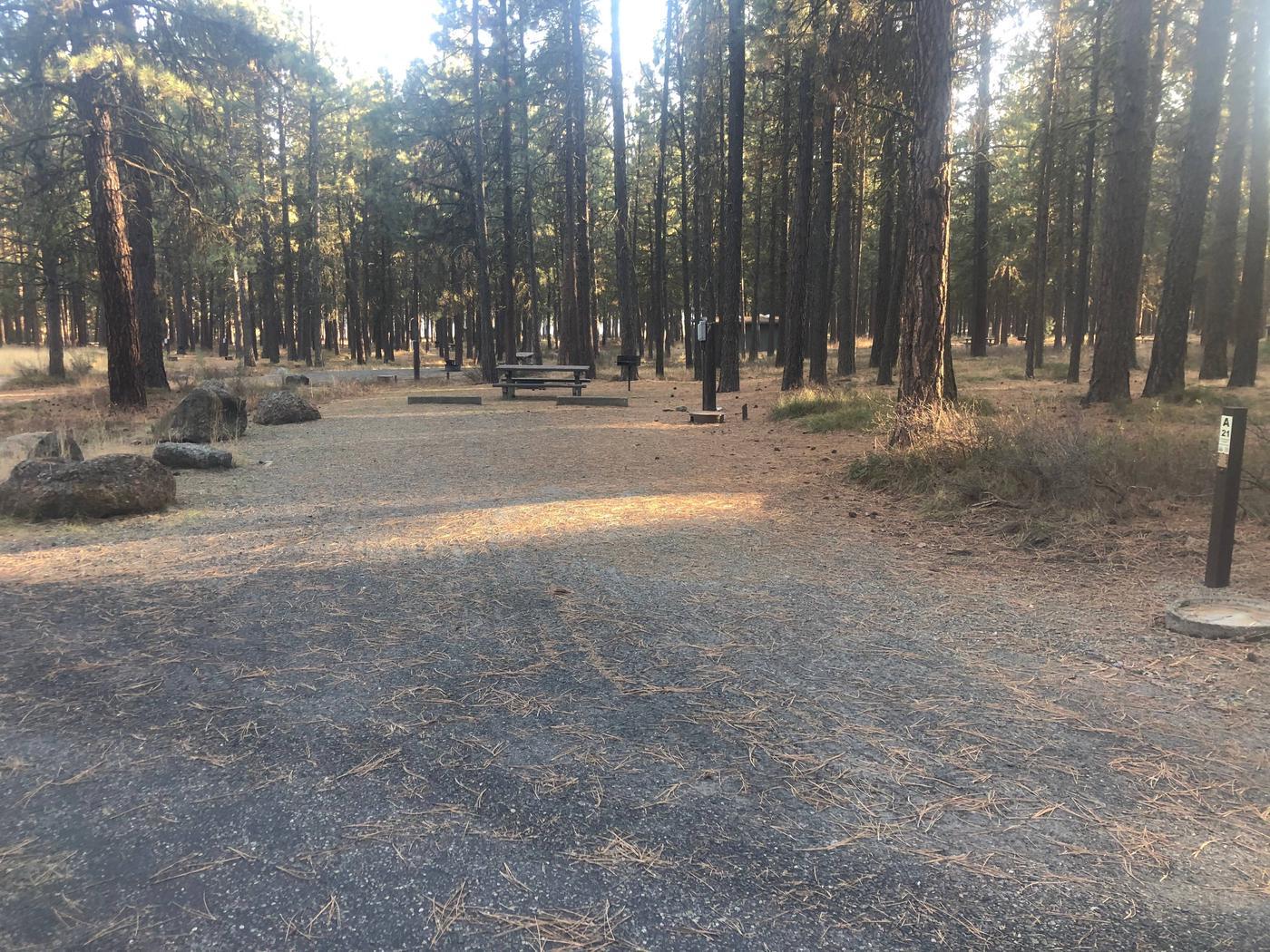 Campsite A21