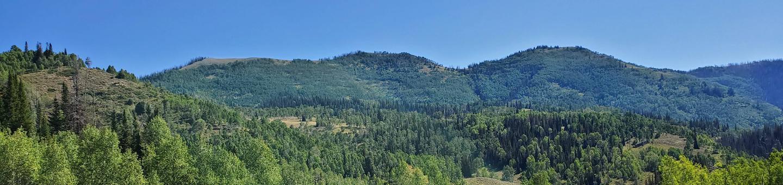 Lake Canyon Campground