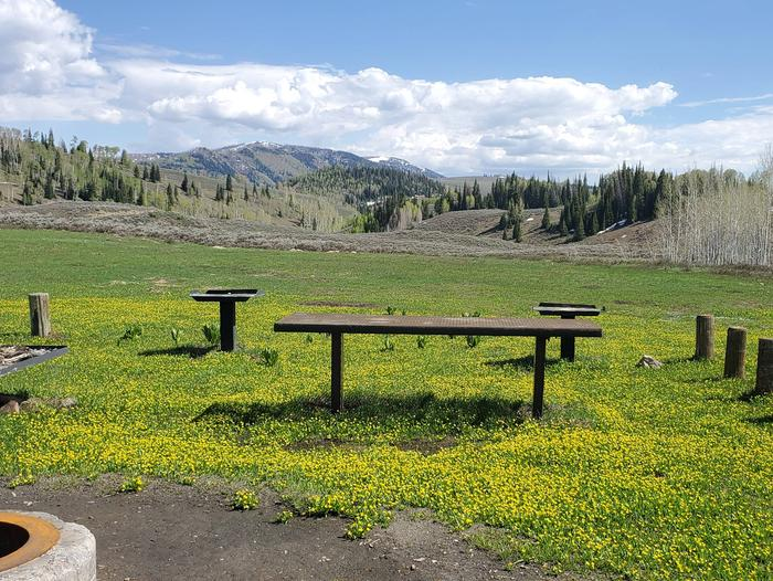 Lake Canyon Campground - Rolfson Group Site A