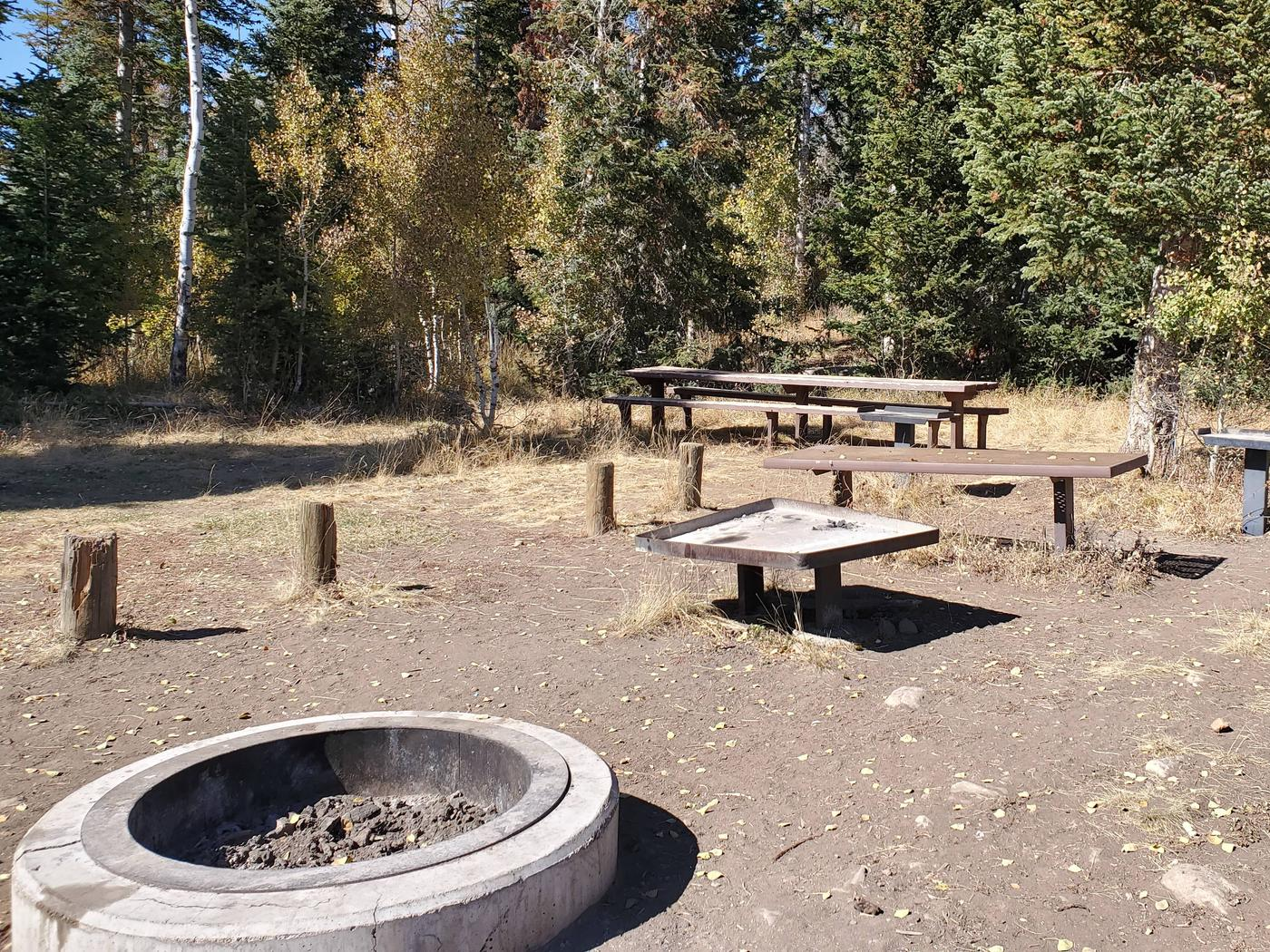 Lake Canyon Campground - Millers Flat Group Site A