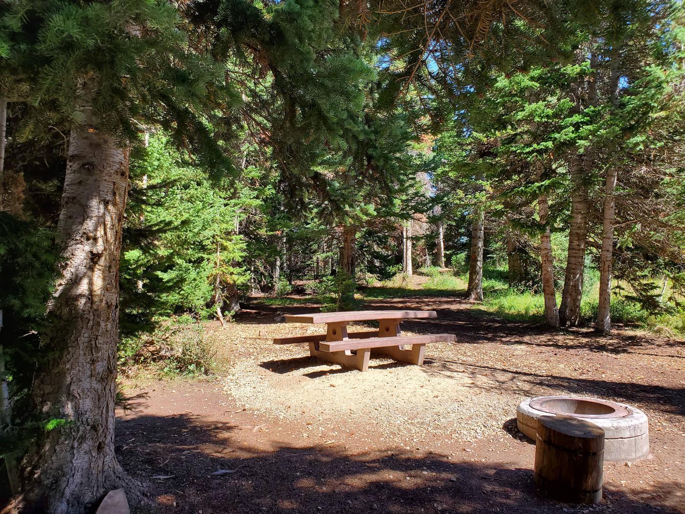 Lake Canyon Campground  - Site 13Lake Canyon Campground - Site 13