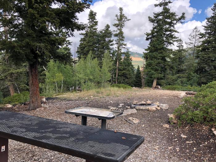 Lake Hill Campground - Group Site 1