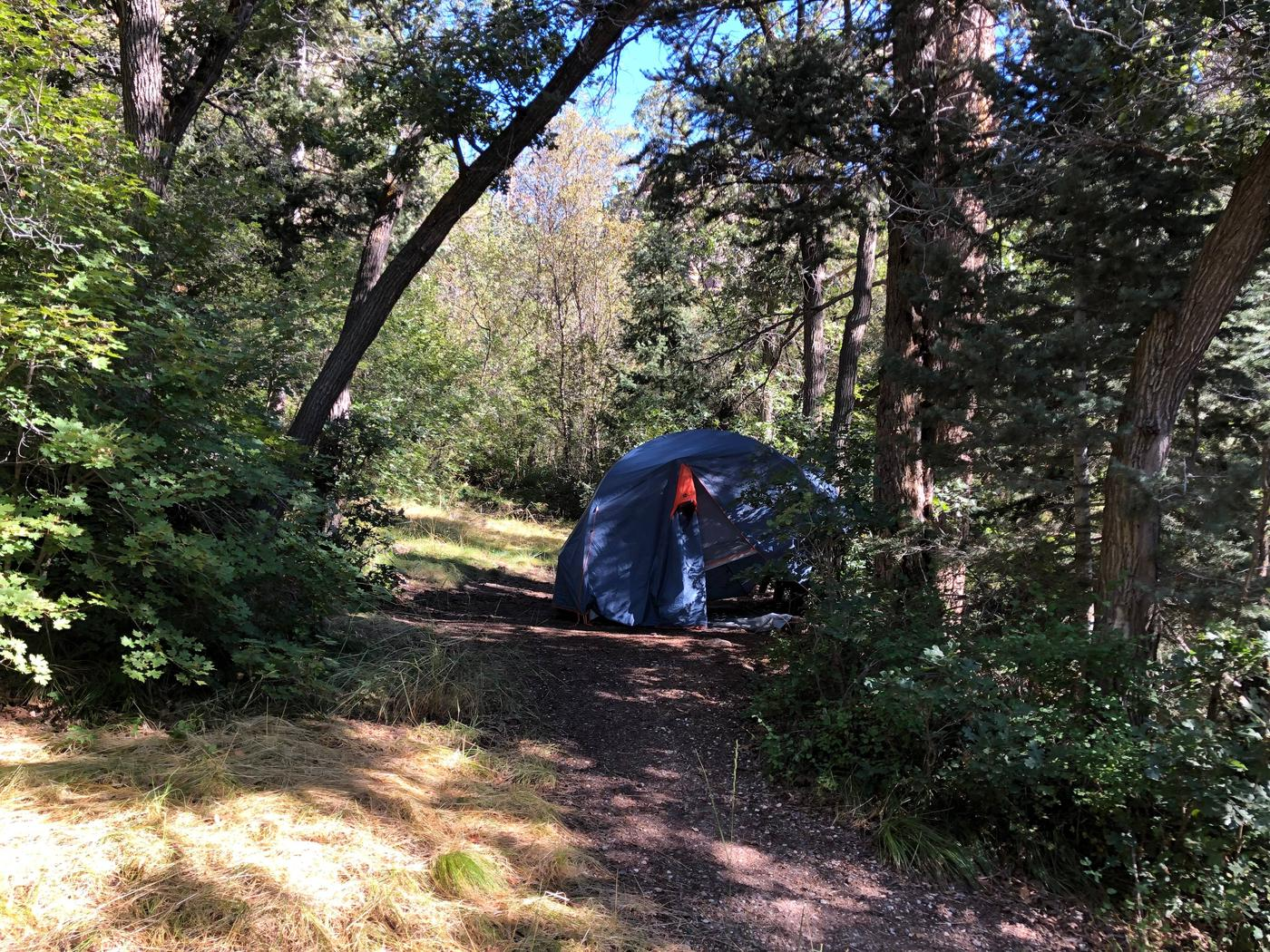 Maple Canyon Campground  - Site 6Maple Canyon Campground - Site 6