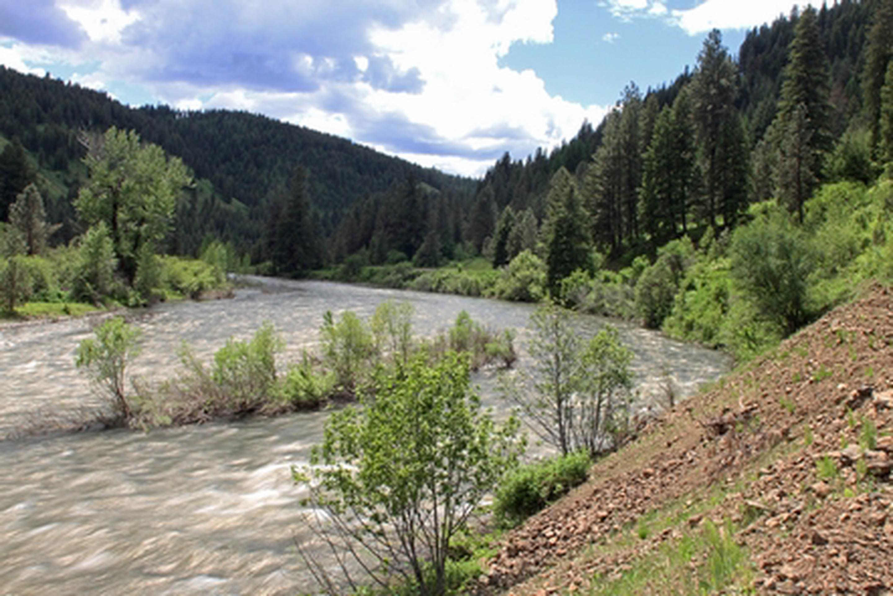 Grande Ronde Wild and Scenic RiverSpring runoff on the Grande Ronde River.