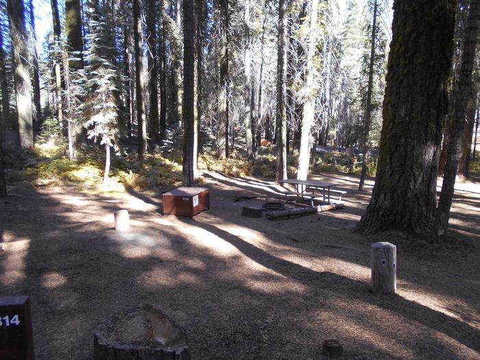 Crane Flat Site 314
