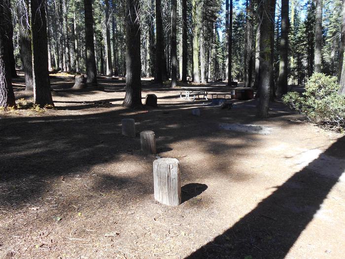 Crane Flat Site 324