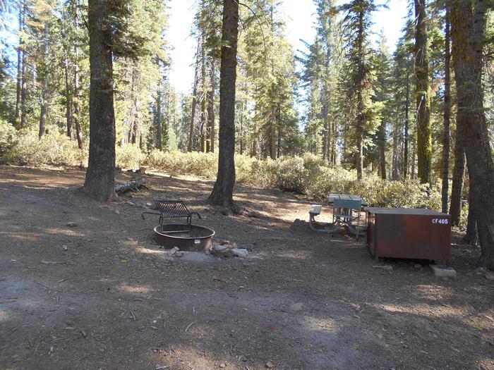 Crane Flat Site 405