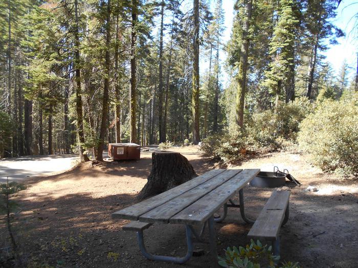 Crane Flat Site 407