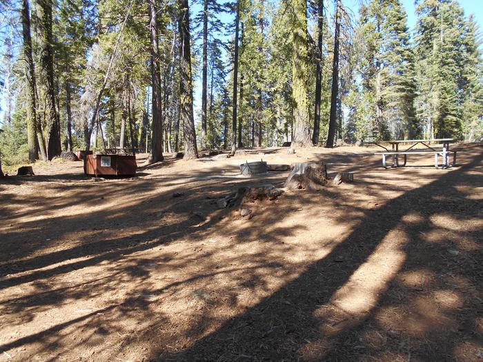 Crane Flat Site 411