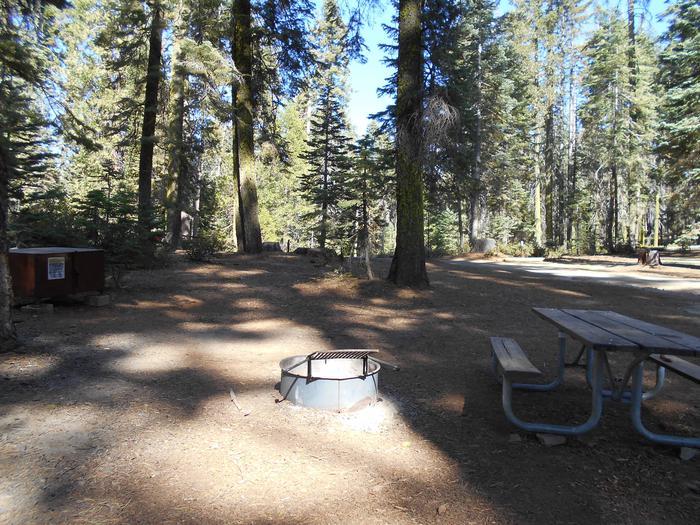 Crane Flat Site 419