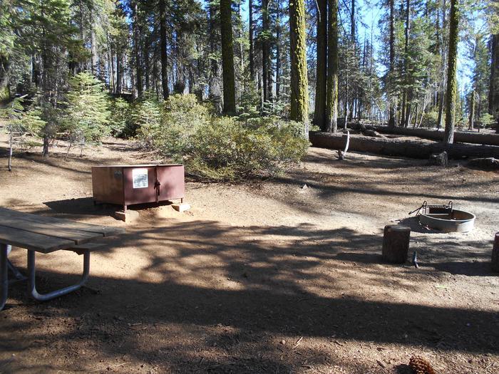Crane Flat Site 424