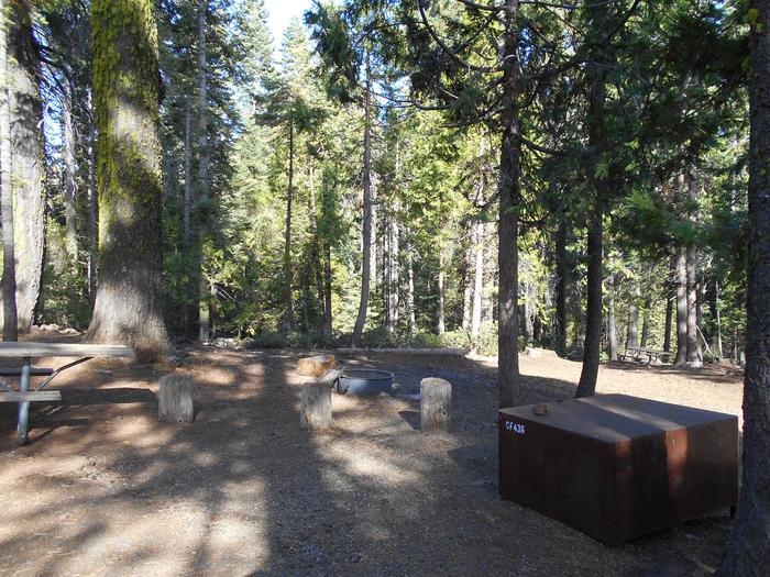Crane Flat Site 436