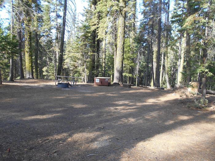 Crane Flat Site 438
