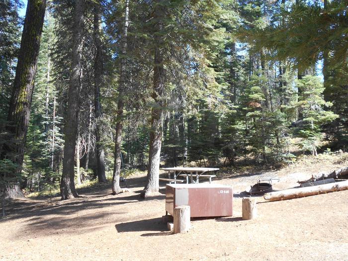 Crane Flat Site 446
