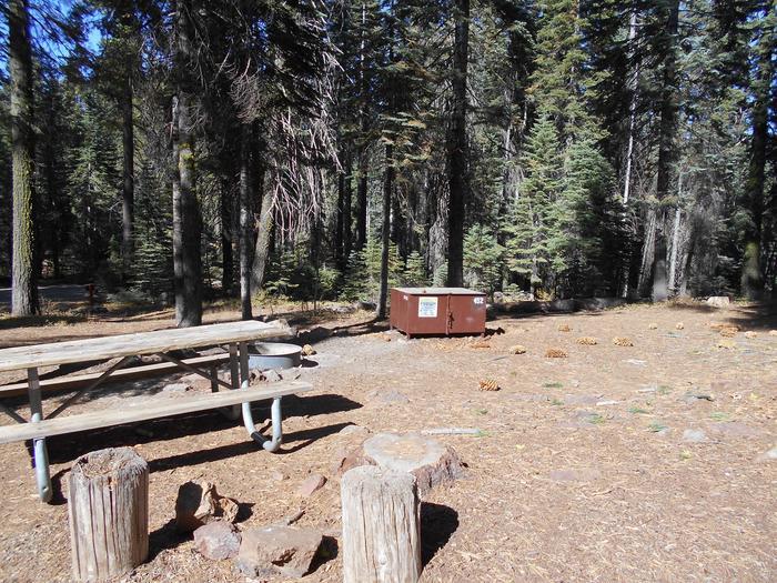 Crane Flat Site 452