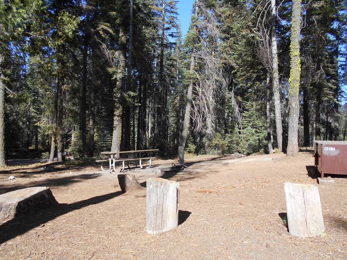 Crane Flat Site 454