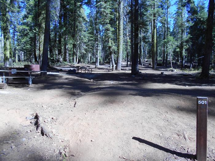 Crane Flat Site 501