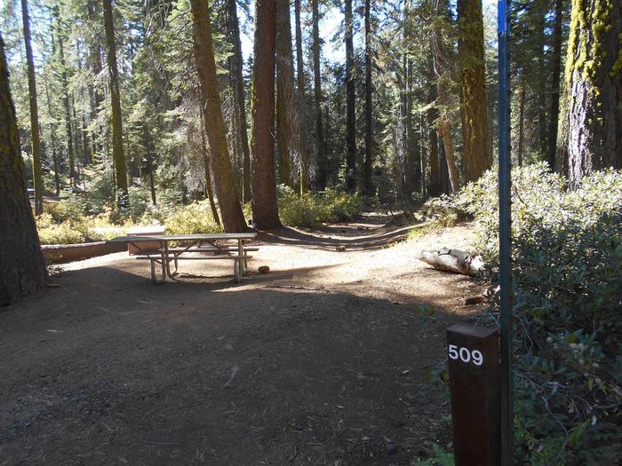 Crane Flat Site 509