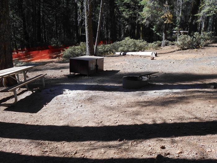Crane Flat Site 515