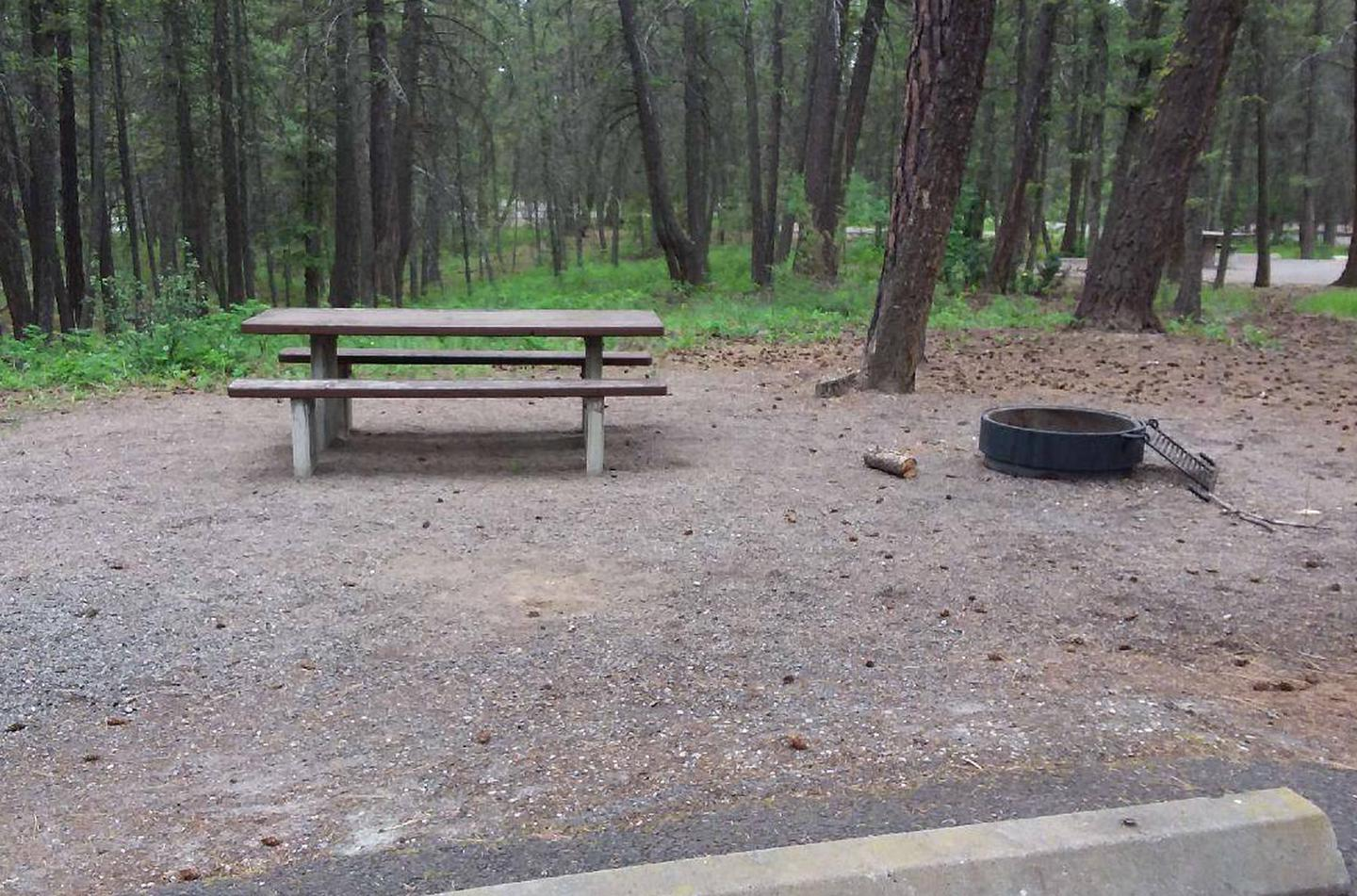 site 51-tableRexford Bench Site 51