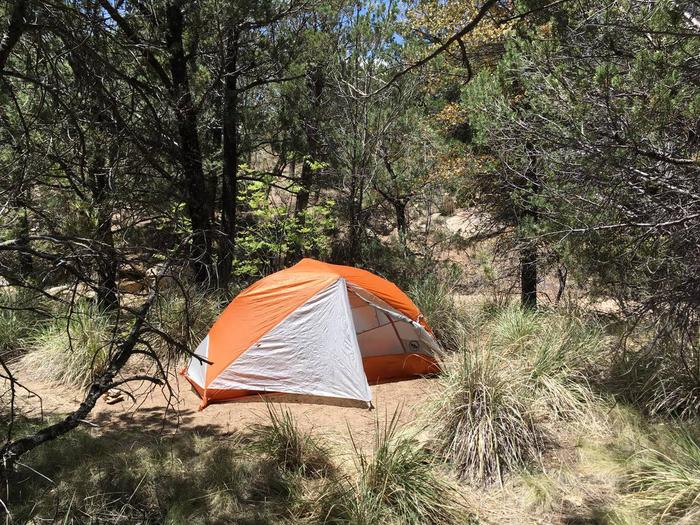 Juniper Basin Campsite