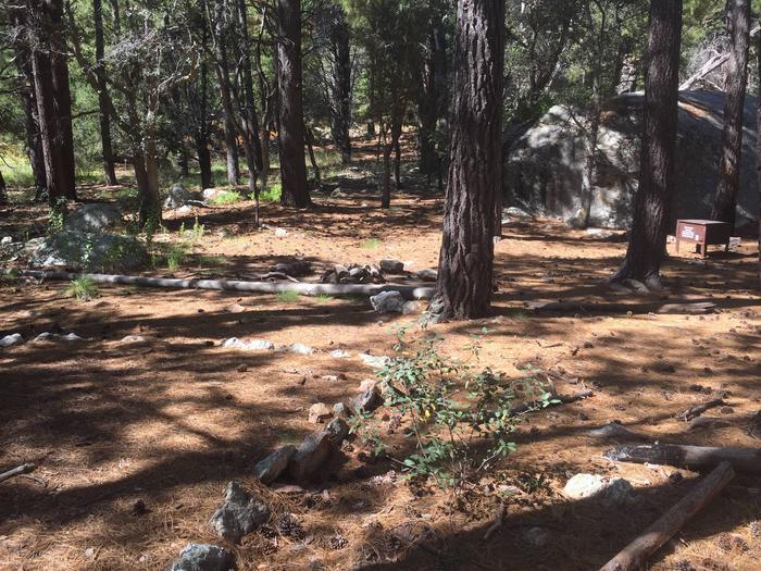 Spud Rock Campsite