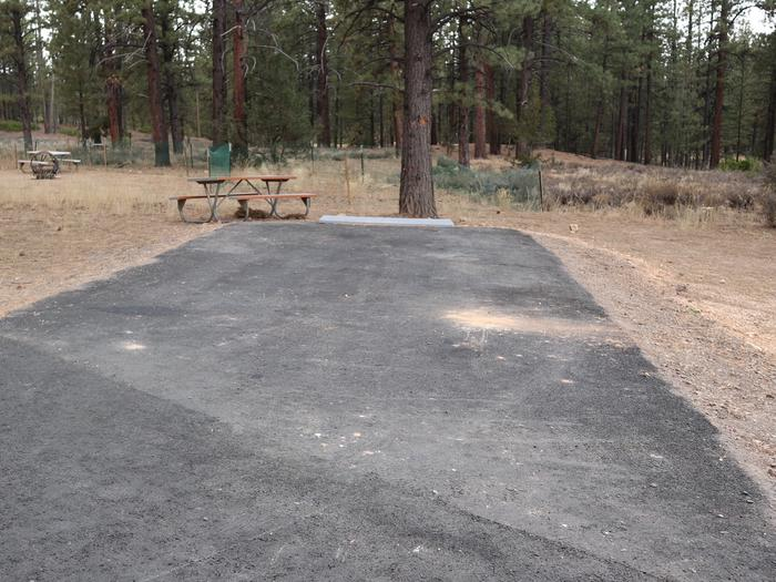 Sunset Campground Site 205Site 205