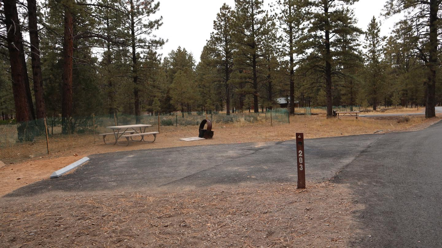 Sunset Campground Site 203Site 203