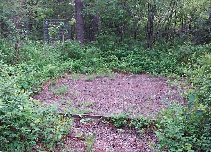 N. Dickey Lake Site 2-tent pad