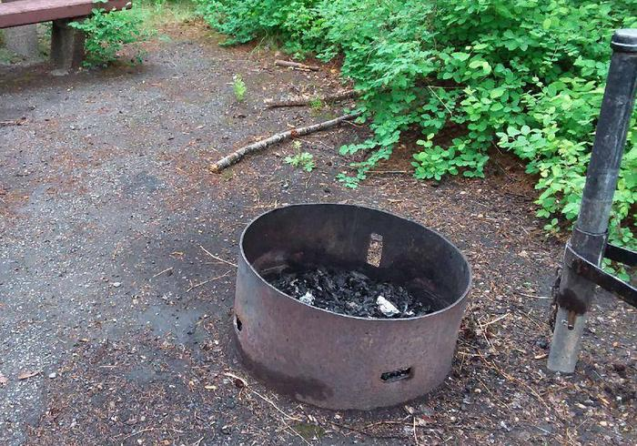 N. Dickey Lake Site 3-fire pit