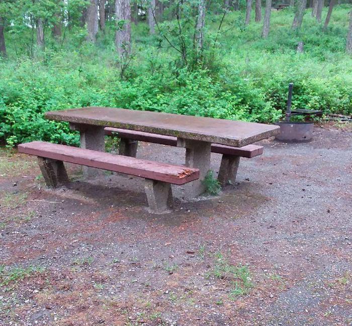 N. Dickey Lake Site 3-table